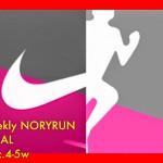 [n❁h]【週刊ノリラン 12月4-5W】ランニング元年の2014年は120回、1046km走破!来年は…
